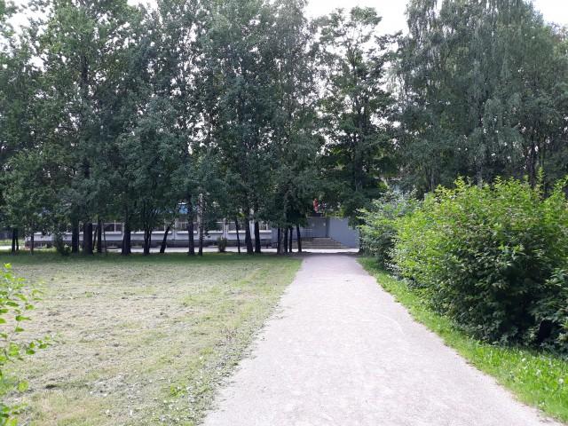 Территория вокруг школы